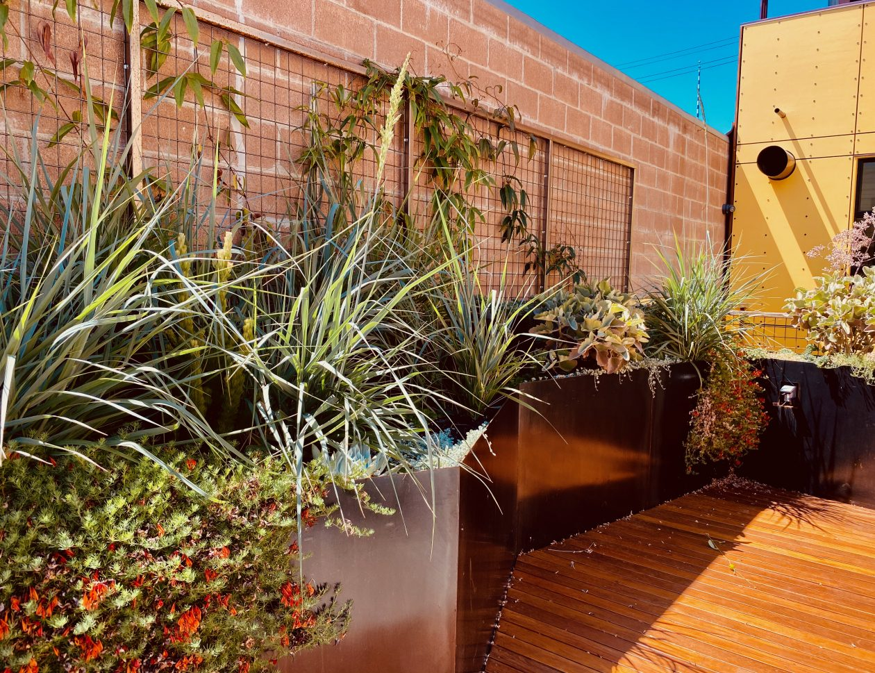 Hoes and Ditches Landscape design and maintenance